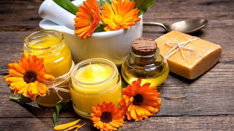 Gyógynövények bőrünk egészségéért
